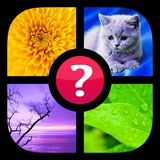 Guess the Word! ~ Photo Quiz with Pics and Words